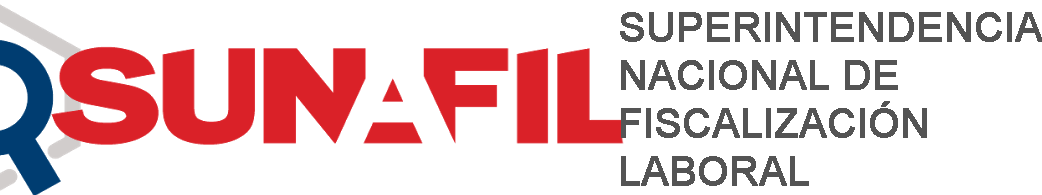 Logo-Sunafil-Final.png